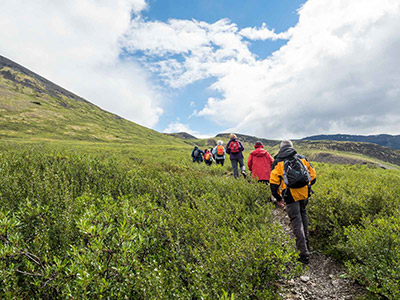 Alaska & Yukon Hiking Tour