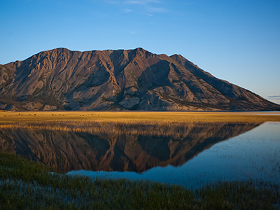 Kluane Nationalpark Tour